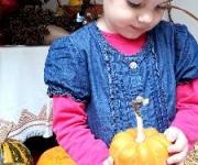 vrtic_dolina_cuda_vozdovac_jesenje_carolije_14_galerija